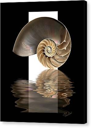 Nautilus Shell Canvas Print by Judi Quelland