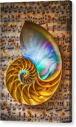 Nautilus Shell On Sheet Music Canvas Print by Garry Gay