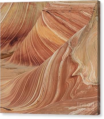 Navajo Sandstone Canvas Print by Jerry Fornarotto