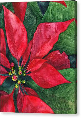 Christmas Flower Canvas Print - Navidad by Casey Rasmussen White