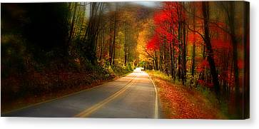 Nc Mountain Fall Drive Canvas Print by Gray  Artus