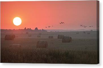 Canvas Print featuring the photograph Nebraska Mornings.. by Al Swasey