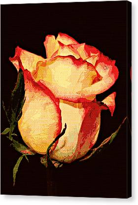 Needlepoint Rose Canvas Print by Cathie Tyler