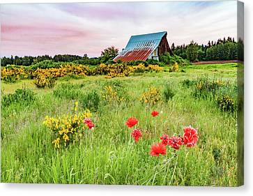 Neglected 1 Canvas Print