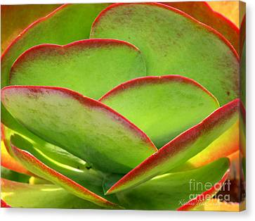 Neon Cactus Canvas Print by Kathie McCurdy