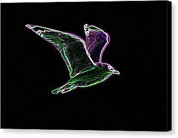 Neon Gull Canvas Print