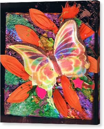 Neon Lights Butterfly On Boxed Canvas Canvas Print by Anne-Elizabeth Whiteway