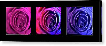 Neon Roses Triptych On Black Canvas Print