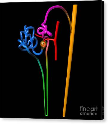 Canvas Print featuring the digital art Nephron Black by Russell Kightley