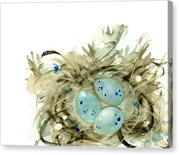 Nest And 3 Eggs Canvas Print