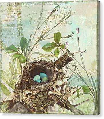 Aviary Canvas Print - Nesting I by Mindy Sommers