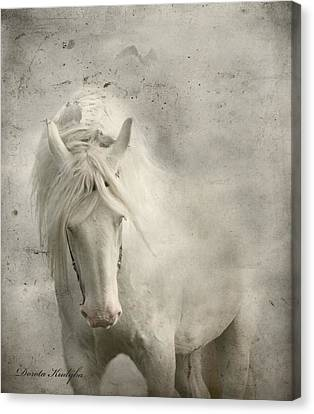 Grey Horse Canvas Print - Nesting Time by Dorota Kudyba