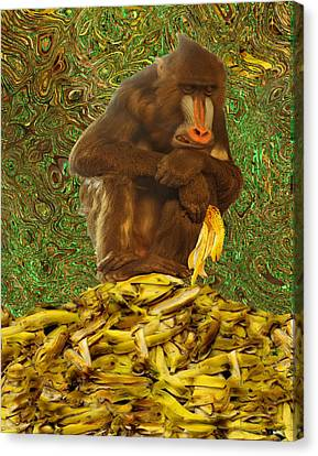 Mandrill Canvas Print - Never Satisfied by Jack Zulli