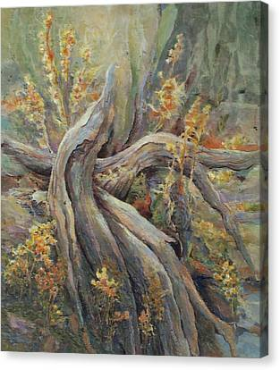 New Beginnings Canvas Print by Don Trout