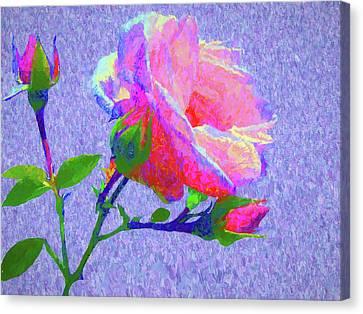 New Dawn Painterly Canvas Print by Susan Lafleur