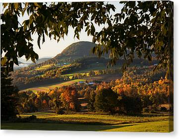 New England Fall Foliage - Peacham Vermont Canvas Print by Joann Vitali