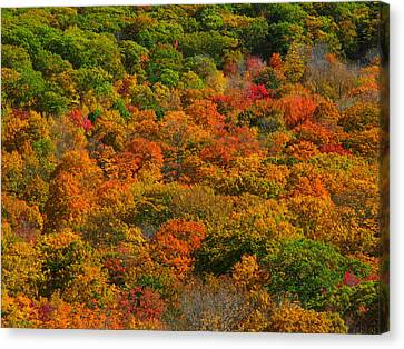 New England Fall Foliage Peak  Canvas Print by Juergen Roth