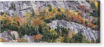New England Autumn Canvas Print - New England Foliage Burst by Thomas Schoeller