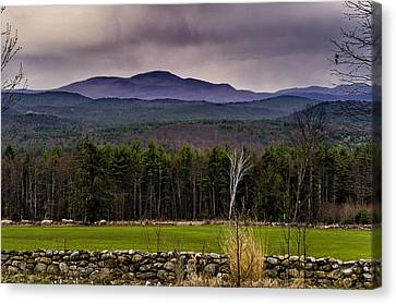 Canvas Print featuring the photograph New England Spring In Oil by Mark Myhaver
