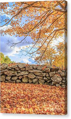 Dry Canvas Print - New England Stone Wall With Fall Foliage by Edward Fielding