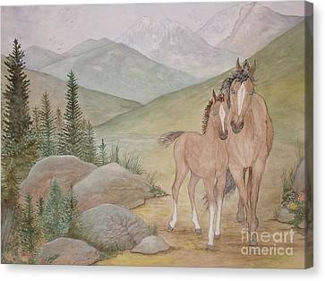 New Foal In The Foothills Canvas Print by Patti Lennox