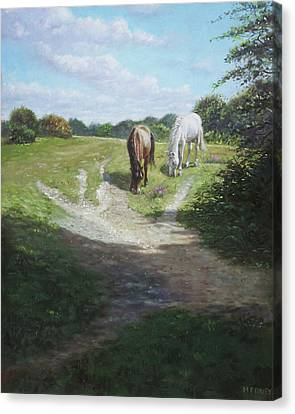 Canvas Print - New Forest Horses With Light And Shade  by Martin Davey