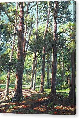Canvas Print - New Forest Trees With Shadows by Martin Davey