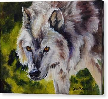 New Kid On The Block Canvas Print by Lori Brackett