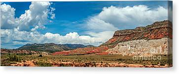 New Mexico Canvas Print by Gina Savage