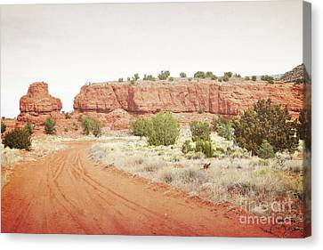 New Mexico Jemez Mountain Red Rock Countryside Canvas Print by Andrea Hazel Ihlefeld