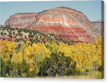 New Mexico Jemez Mountains Fall Foliage Landscape Canvas Print by Andrea Hazel Ihlefeld