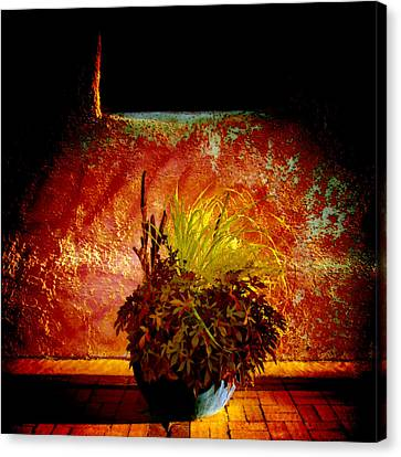 New Mexico Night Canvas Print by Ann Powell