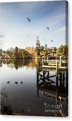 Wooden Platform Canvas Print - New Norfolk Scenes by Jorgo Photography - Wall Art Gallery