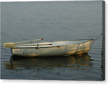 New Oars Canvas Print by Ron Read