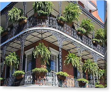 New Orleans Balcony Canvas Print by Carol Groenen
