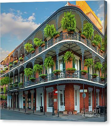 New Orleans House Canvas Print by Inge Johnsson