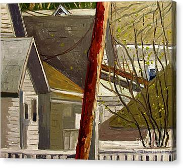 Artistic License Canvas Print - New Red Pine Rising Up by Charlie Spear