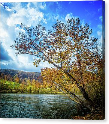 New River In Fall Canvas Print