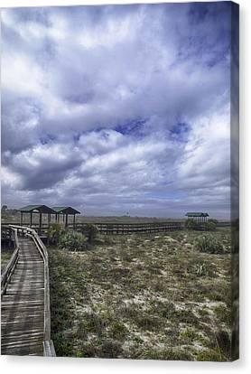 New Smyrna Beach Dunes Canvas Print