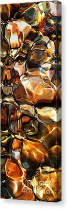 New Textures Of A Streambed Canvas Print by Terril Heilman