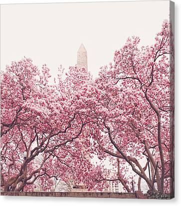 New York City - Springtime Cherry Blossoms Central Park Canvas Print by Vivienne Gucwa