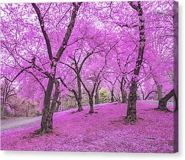 New York City Springtime Canvas Print