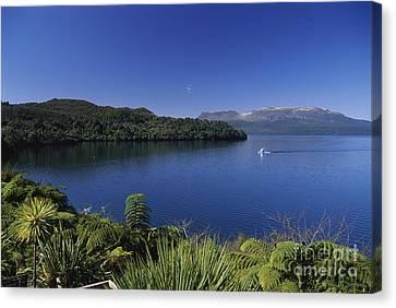 New Zealand, Rotorua Canvas Print by Greg Vaughn - Printscapes