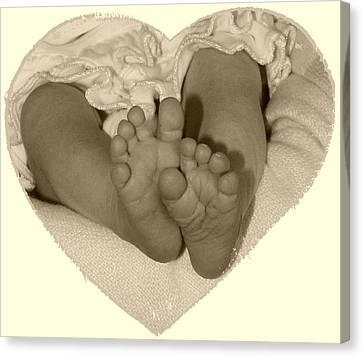 Newborn Feet Canvas Print