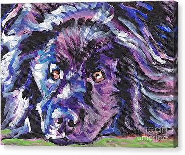 Newfoundland Canvas Print - Newfie  by Lea S