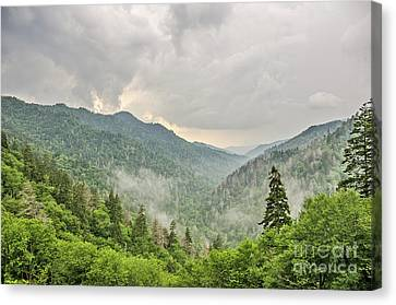 Canvas Print featuring the photograph Newfound Gap In Great Smoky Mountains National Park by Sue Smith