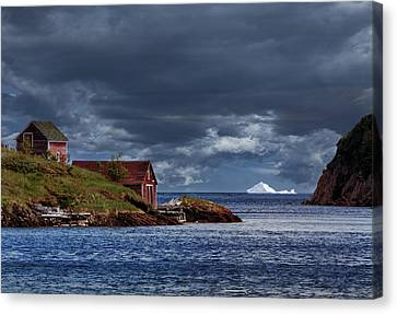 Newfoundland In June Canvas Print