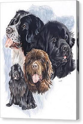 Working Dog Canvas Print - Newfoundland W/ghost by Barbara Keith