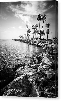 Newport Beach Jetty Black And White Photo Canvas Print