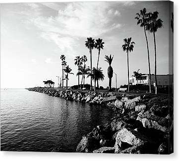 Newport Beach Jetty Canvas Print by Paul Velgos